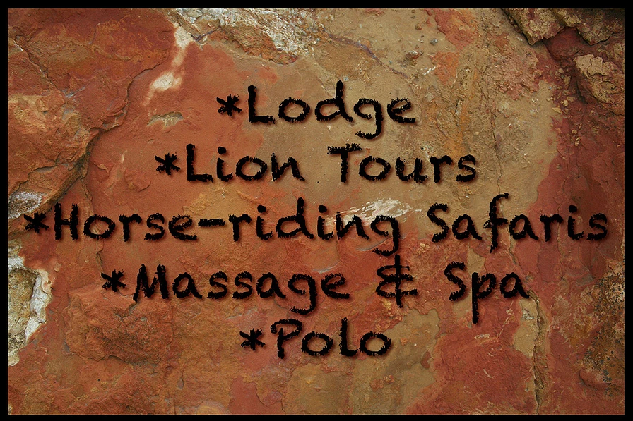 Lodge, Lion Tours, Horse Riding Safaris, Massage & Spa, Polo